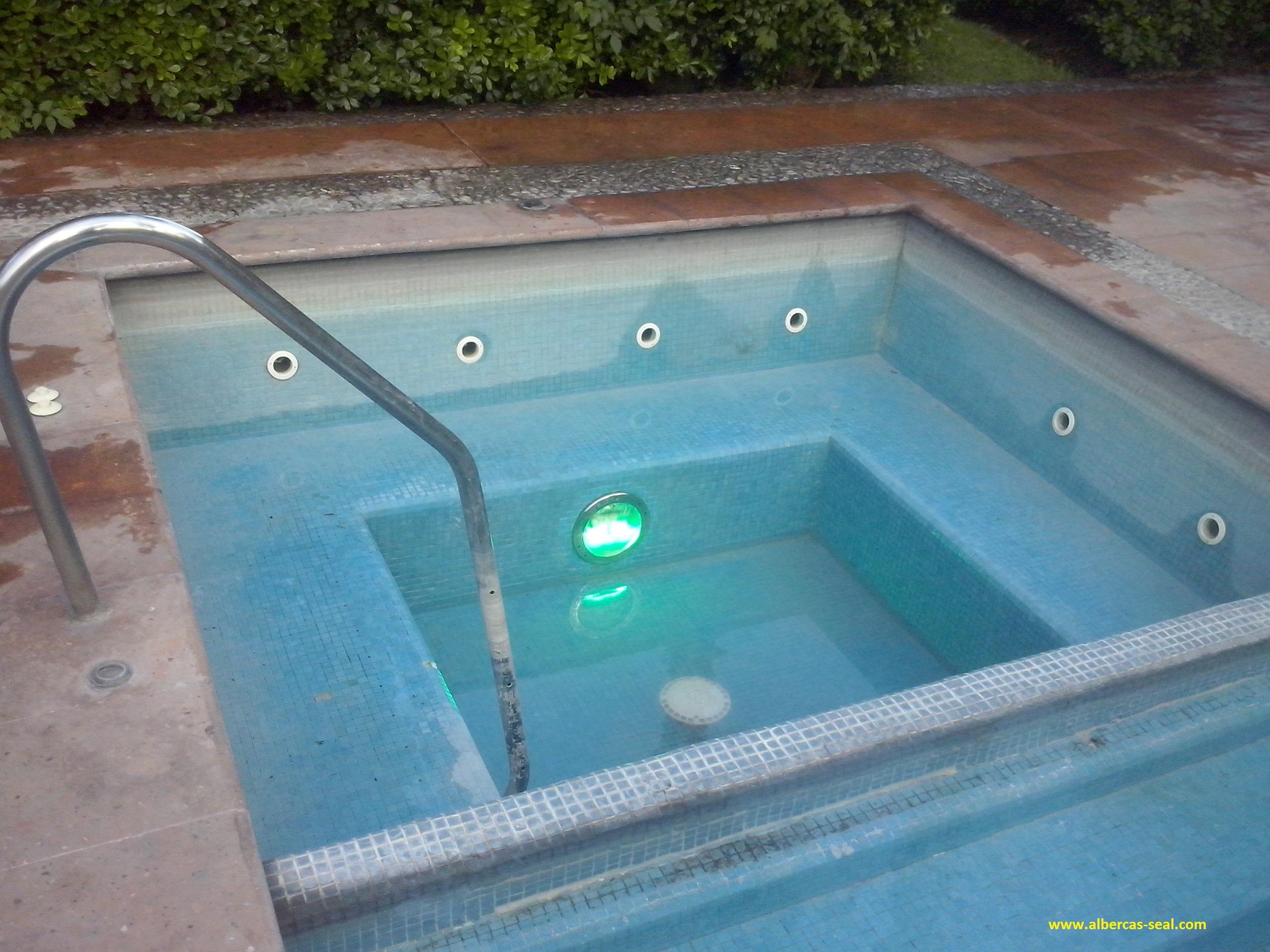 Mantenimiento para albercas y piscinas limpieza de for Construccion de piscinas en mexico